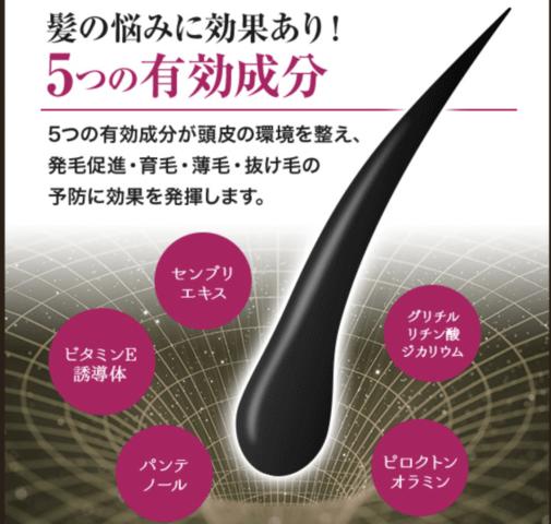 髪の悩みに効果ありの5つの有効成分を紹介