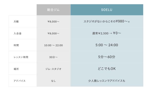 ソエル公式サイトのプラン比較表