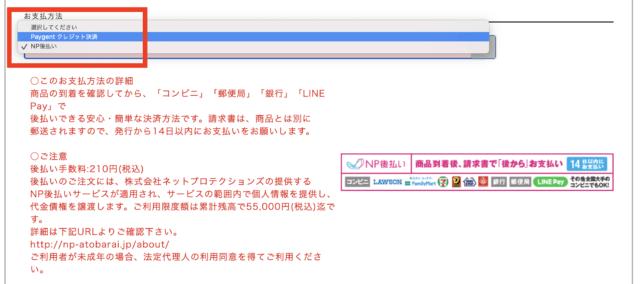 グラマラスタイルナイトブラの公式サイトの支払い方法の画面