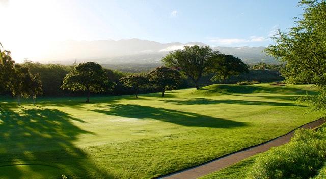 緑の芝生が生い茂るゴルフ場